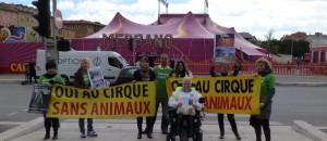Manifestation devant le cirque Medrano, samedi 20 avril 2013