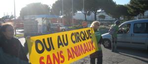 Action pour des cirques sans animaux, le 7 decembre