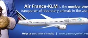Action Air France Air Souffrance, samedi 22 mars
