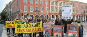 Action cirque du 19 avril