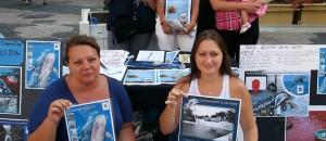 Journée d'Action Mondiale pour les Dauphins