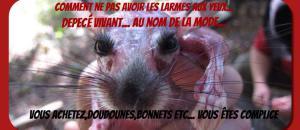 Marche Anti Fourrure à Cannes le 14 janvier