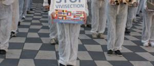 Journée mondial des animaux dans les laboratoires