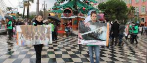 Journée Internationale pour le Droit des Animaux