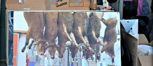 Un industriel de la viande révèle pourquoi les abattoirs ne sont pas filmés