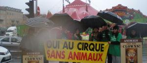 Cirque de Venise – action «OUI AU CIRQUE SANS ANIMAUX» – samedi 21 février