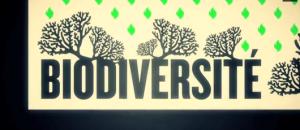 Biodiversité, l'essentielle différence