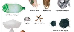 Collectif Animalier du 06 a partagé la photo de Murielle Oriol.   Les espèces les plus dangereuses en Méditerranée