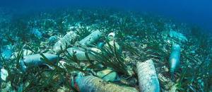 Collectif Animalier du 06 via Association Green: Au fond de la Méditerranée, les poubelles de la Côte d'Azur…