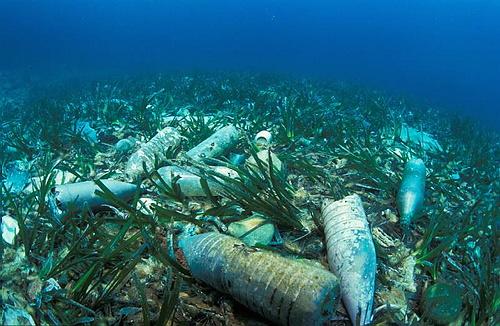 Au fond de la Méditerranée, les poubelles de la Côte d'Azur