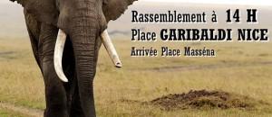 Marche contre les trafics d'ivoire, le 3 octobre, à NICE