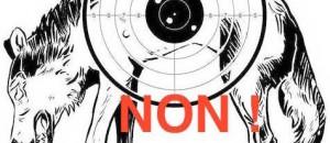 «La campagne sur le loup a fini en coup de griffes»  (asso GREEN) Article de Nice Matin