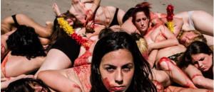 Le Parlement  Européen accepte d'examiner une pétition contre la corrida – CRAC Europe