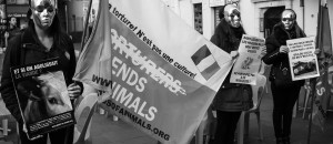 Protection des animaux: ils manifestent pour une alimentation sans violence (Nice Matin)
