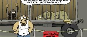 La Bédé Végane : Circus Minus