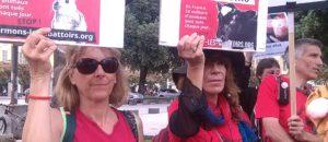 Marche Internationale pour la Fermeture des abattoirs Nice Quelques photos…
