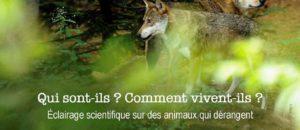 Conférence : les loups biologie d'un mythe