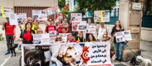 Happening contre l'abattage des chiens errants en Tunisie à Nice