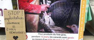 Noël sans souffrance: stop à la cruauté du foie gras!