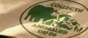 Prochaine réunion mensuelle du collectif animalier