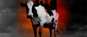 Dites non à la ferme des 4000 vaches!