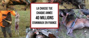 Succès de la manifestation contre  la chasse du 10 septembre à Nice