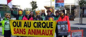 le cirque c'est sans les animaux!