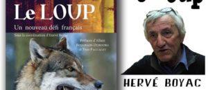 Le loup : un nouveau défi français